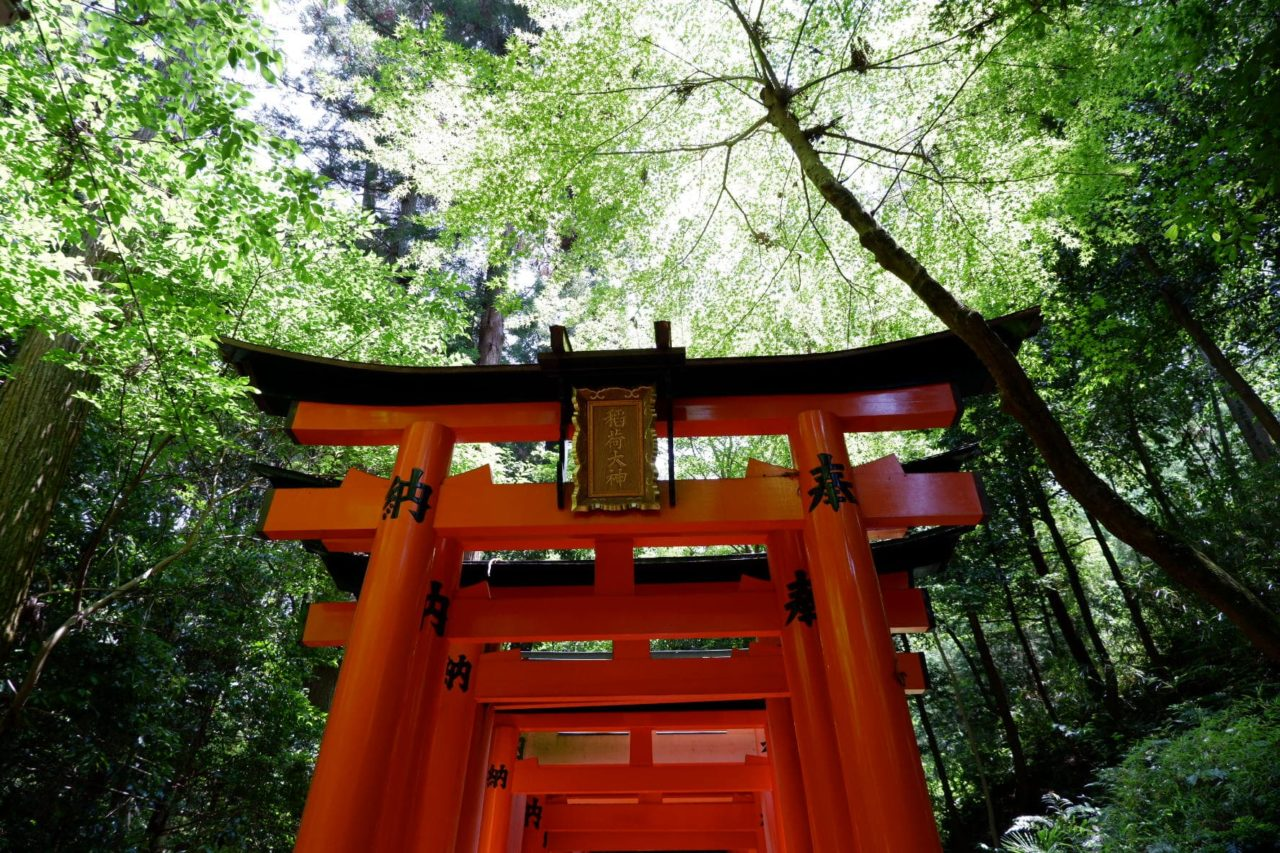 The vivid red arches at the Fushimi Inari Shrine in Kyoto, Japan - the perfect stop on your 2 day Kyoto itinerary!