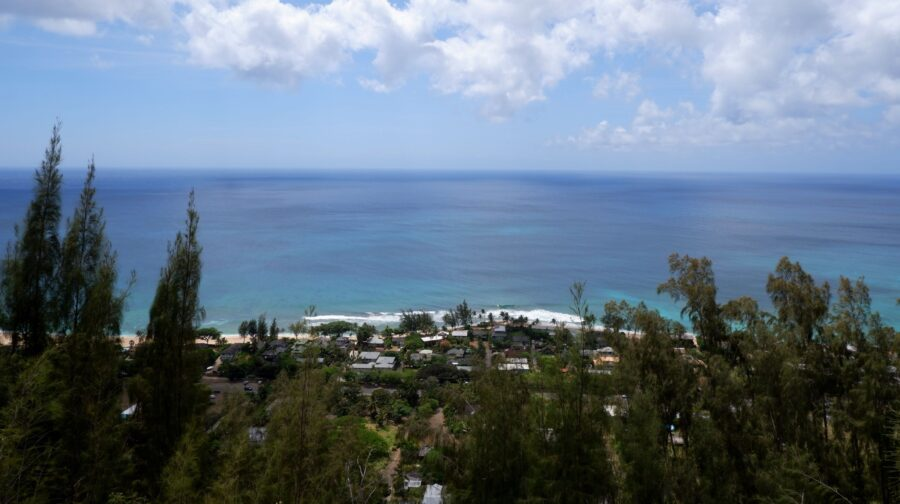 A view of the ocean and some houses from the top of the Ehukai Pillbox Hike, one of the best hikes in the North Shore of Oahu