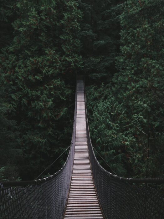 The Lynn Canyon Suspension Bridge, surrounded by trees on the way to Lynn Loop Hike in Vancouver