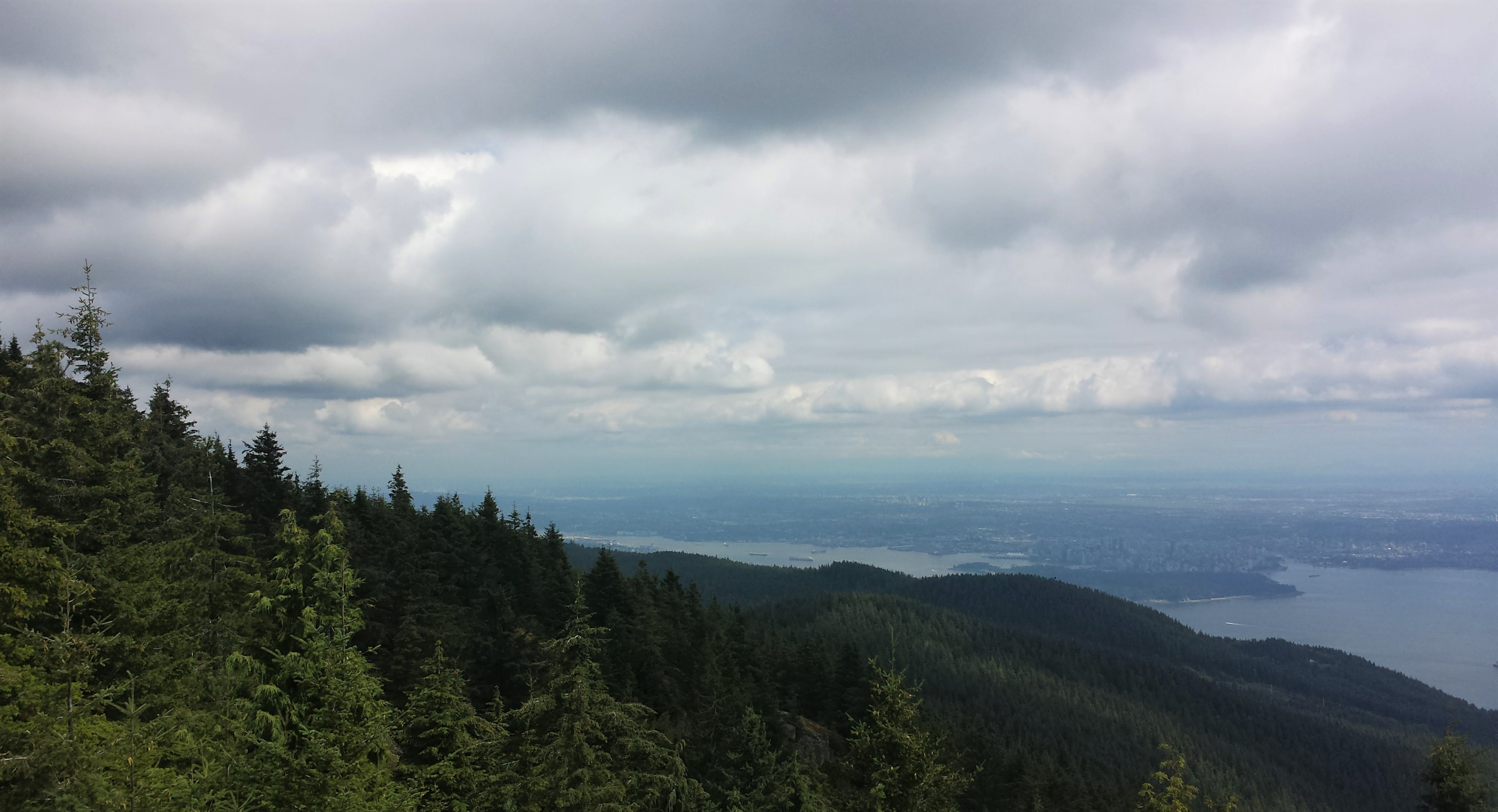 Viewpoint of the forest, Vancouver, and the ocean from Eagle Bluffs - One of the Best Hikes in Vancouver