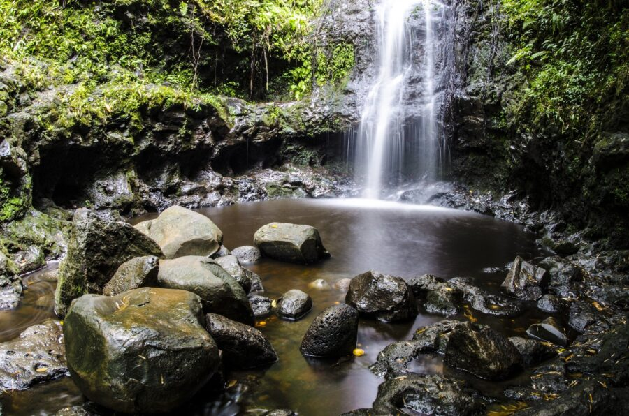 View of the pool, rocks, and base of the Manoa Falls, one of the waterfall hikes in Oahu