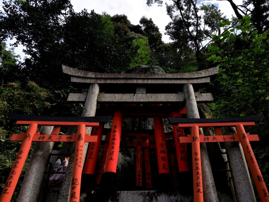 Some of the sights and red Torii arches surrounded by the forest on the Fushimi Inari hike on Mt Inari in Kyoto