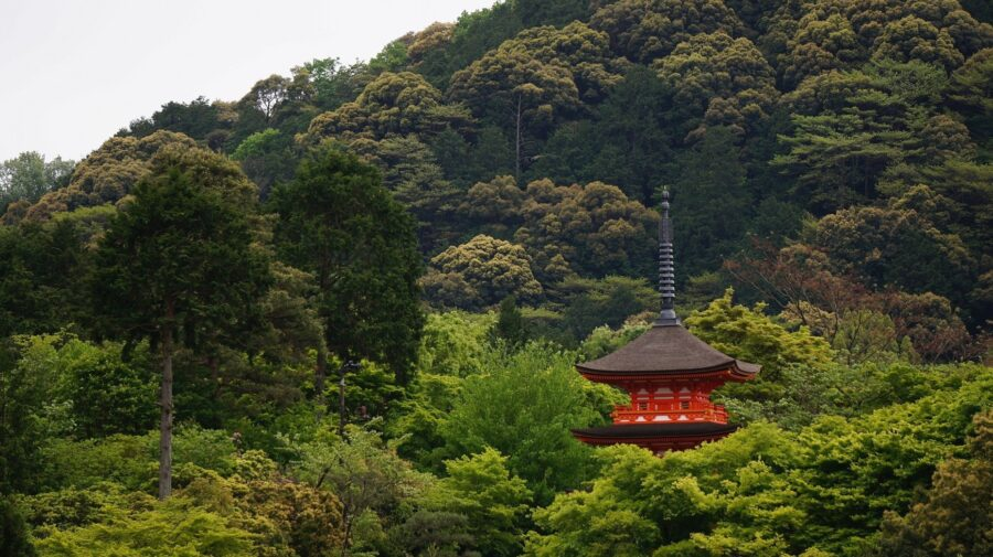 The red Jishu Shrine surrounded by forest at the Kiyomizu-dera temple in the Gion District Kyoto