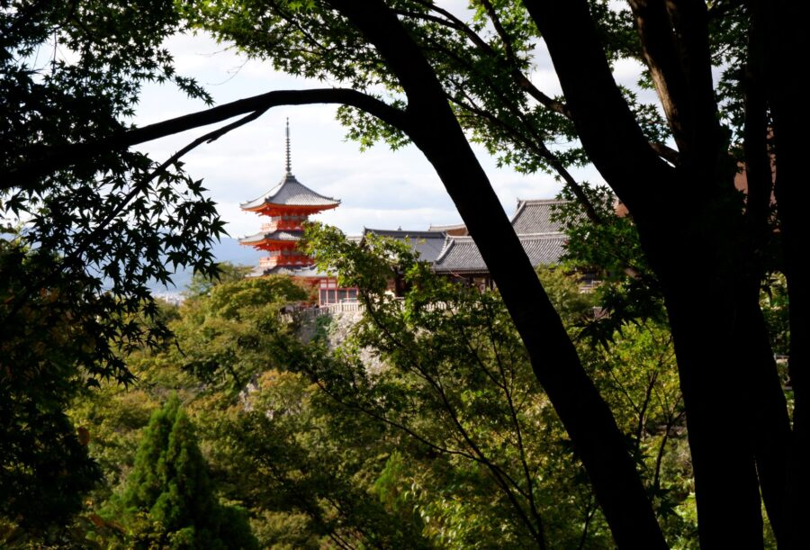 View of some of a towering temple at Kiyomizu-dera through some trees in Kyoto, Japan