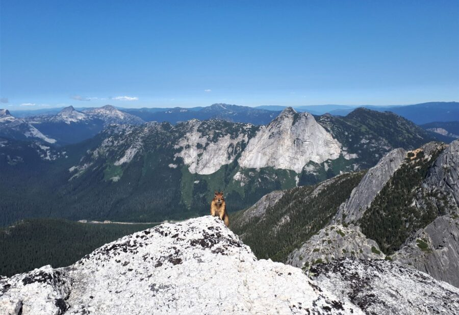 22 Stunning Hikes Near Vancouver - View from Needle Peak in Hope, BC