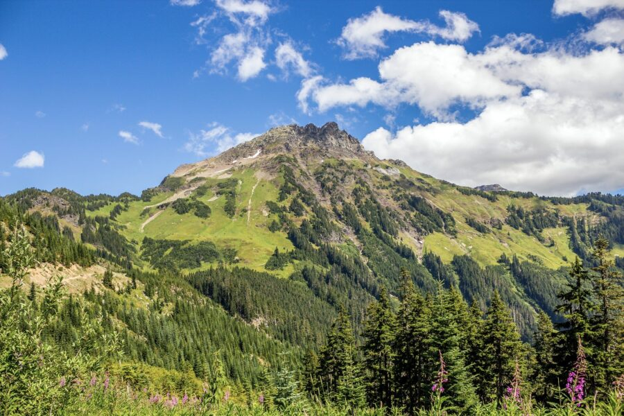 The beautiful peak of Mount Cheam in Chilliwack, BC, covered in greenery - one of the hikes around Vancouver