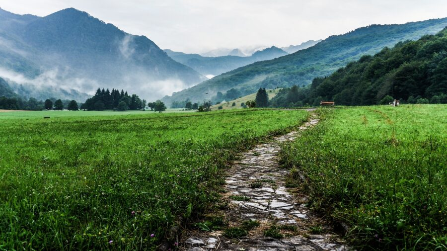 A bare rocky hiking trail surrounded by green grass leading into the mountains, clean because people left no trace!
