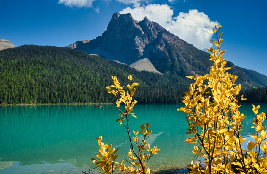 The stunning Emerald Lake in Yoho National Park, with the Canadian Rockies in the background