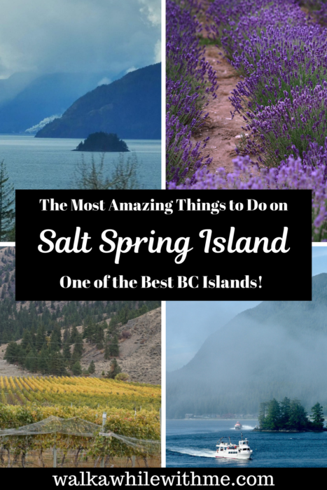 The Most Amazing Things to Do on Salt Spring Island - One of the Best BC Islands!