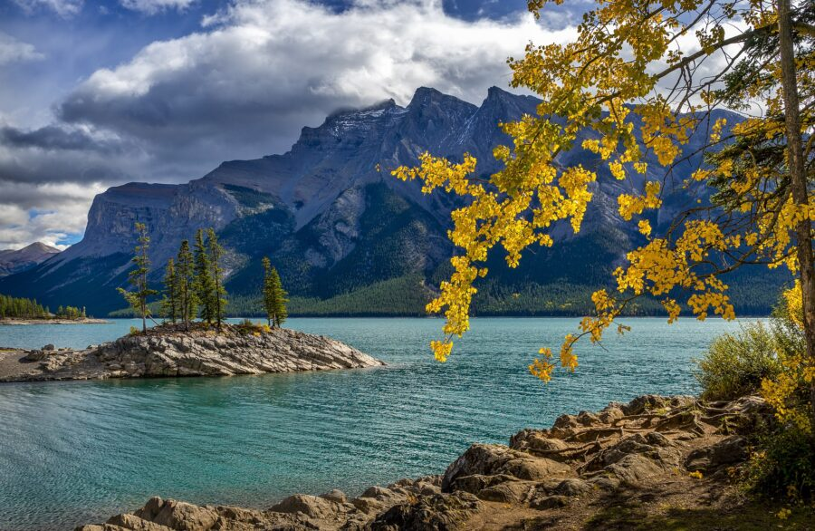 The golden leaves on the foreground of the breathtaking Lake Minnewanka, with an island in the middle of the lake and the Rocky Mountains in the back