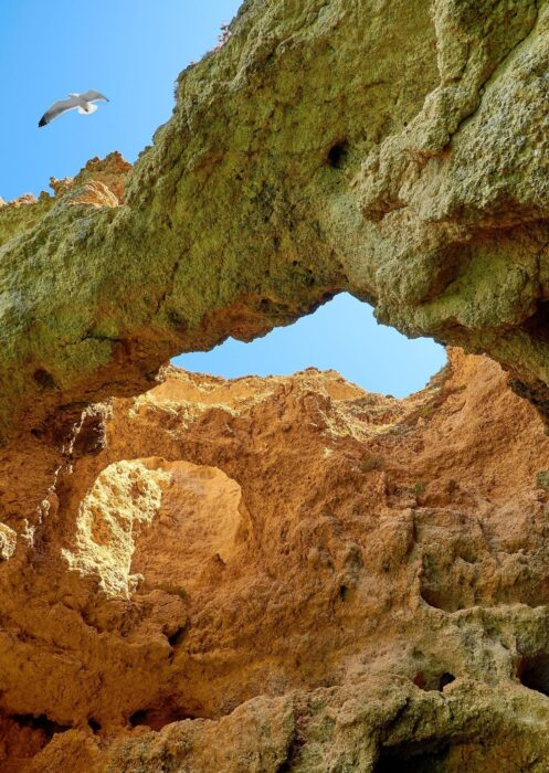 View of the sky, a seagull, and the underside of a sandstone arch, near some Lagos Portugal Caves